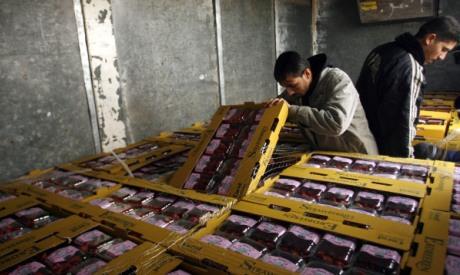 Gazan exports