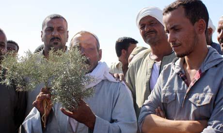 El-Hagar resident (L) holds tomato stalk while Mostafa Elwany (R) listens