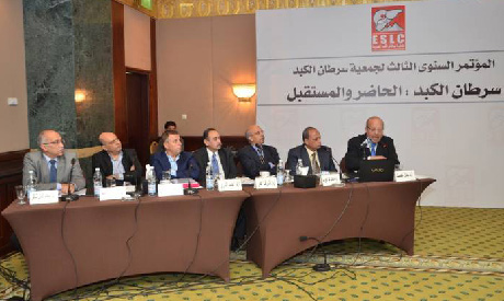 liver cancer egypt conference