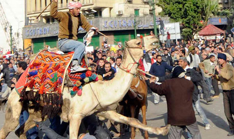 Battle of the Camel