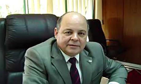 Saber Arab, Minister of Culture