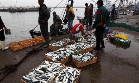 Morocco port