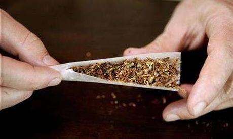 Hash/Cannabis rolling