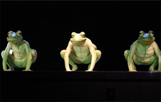 Frogz (Photo: Ati Metwaly)