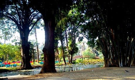 Al-Orman garden,photo by Farah El Akkad