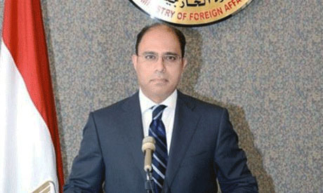 foreign ministry spokesman Ahmed Abu Zeid