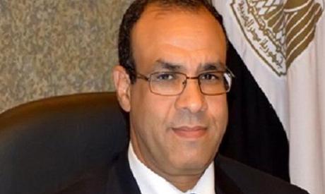 Spokesman for the Egyptian foreign minister Badr Abdel-Ati