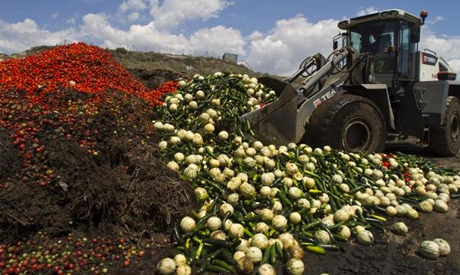 Vegetable recycling