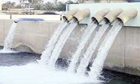Egyptian Water Plant