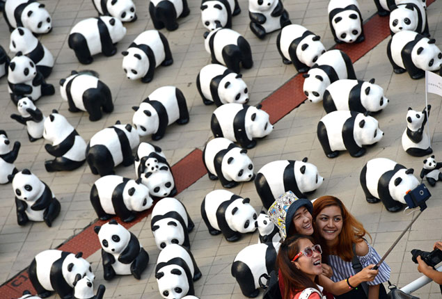 Picture of the day: Selfie with papier-mache pandas, created by French artist Grangeon