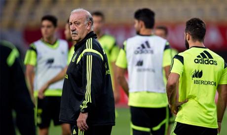Coach Vicente del Bosque