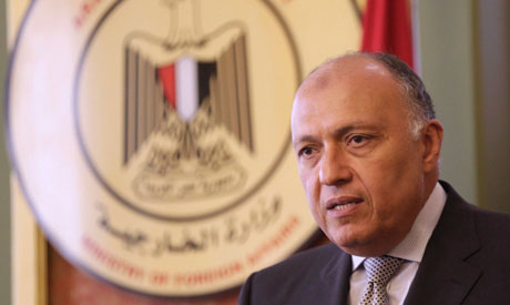 Egypt FM Sameh Shoukry	(Reuters)