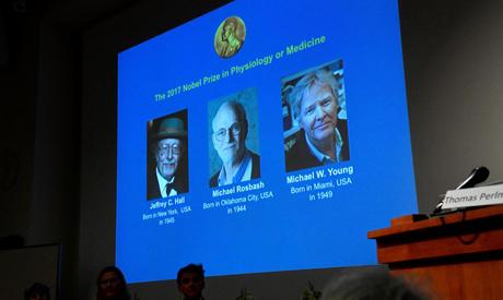 Medicine Nobel prize awarded for body clock discovery