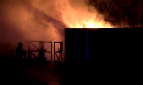 London Zoo on fire