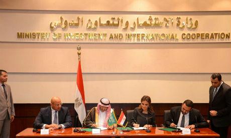 Minister Sahar Nasr