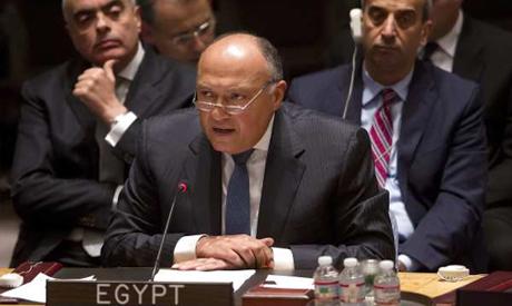 FM Sameh SHoukri