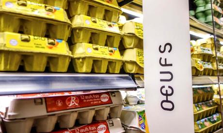 Eggs Scandal