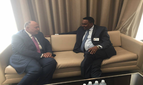 Shoukry and Ethiopian FM