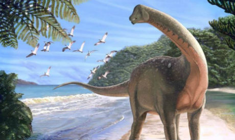School-bus sized 'Holy grail' dinosaur discovered in Sahara desert