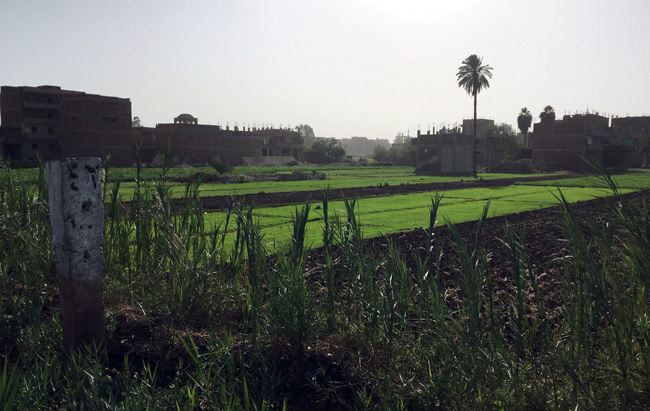 A view of houses at the village of Ikyad Dijwi in the Nile Delta of El Qanater El Khayreya city in A