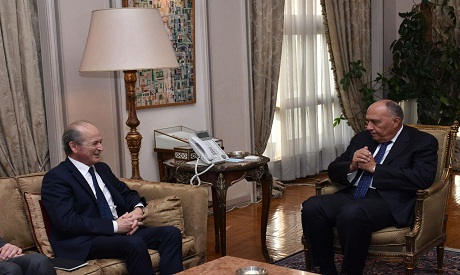 Shoukry and French special envoy