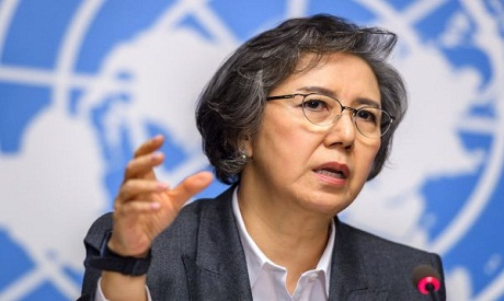 Special Rapporteur to Myanmar