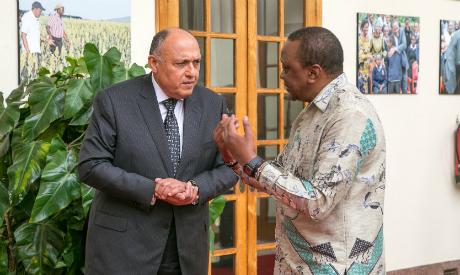 Shoukry and Kenyatta