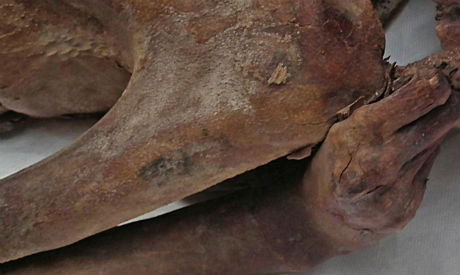 World's earliest tattoos discovered on mummies
