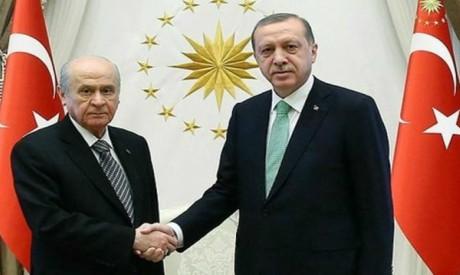 Recep Erdogan, Devlet Bahceli