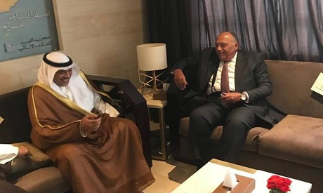 Shoukry meets Saudi counterpart