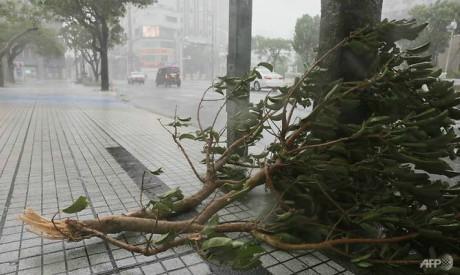 Typhoon Trami, Japan