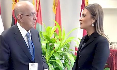 Sahar Nasr, AFESD Chairman