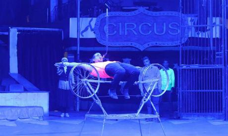 Cairo circus