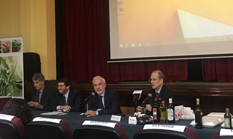 Panel at the Italian Cultural Institute in Cairo