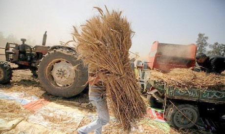 traditional means of agriculture