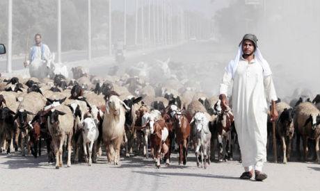 Economic crunch of the Eid
