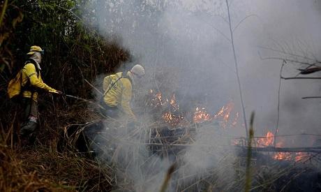 Amazon firefighters