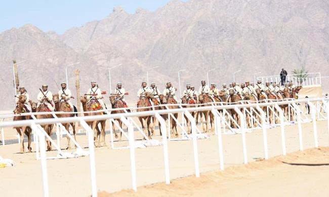 international camel race festival