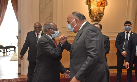Egyptian and Eritrean FMs