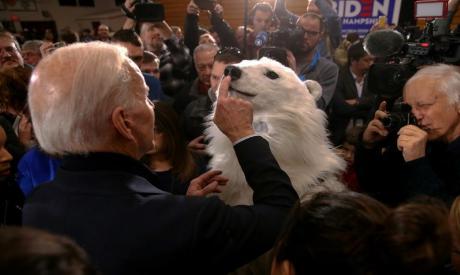 Democratic presidential candidate former Joe Biden