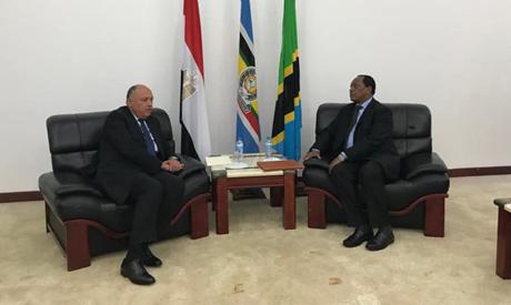 Egypt's Foreign Minister Sameh Shoukry and his Tanzanian counterpart Palamagamba Kabudi