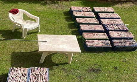 Food prepared for grilling by a group of Chinese at their garden (Photo: Ahram Arabic news website)