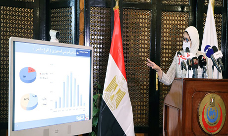 Egyptian minister of health
