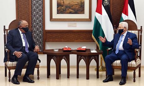 Shoukry tells Palestine