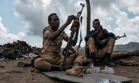 Members of the Afar Special Forces in Tigray region