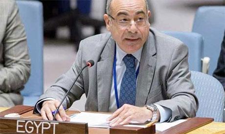 Mohamed Fathi Ahmed Edrees