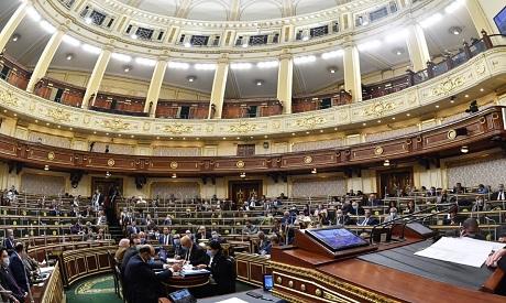 Egypt Parliament FGM