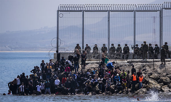 Wave of Immigrants