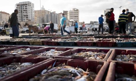 Fish market in Gaza