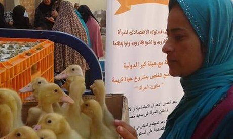 A new era for rural Egypt